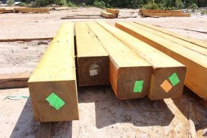 fsc-hardwood-from-guyana